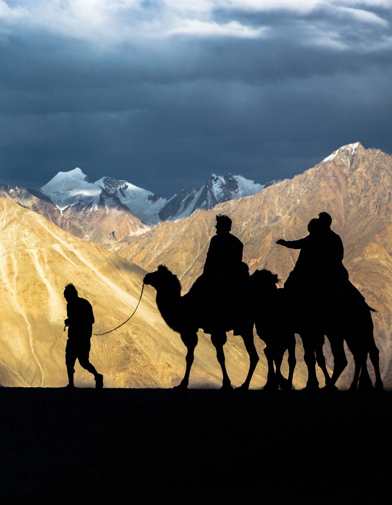 Family Adventure Ladakh- Summertime special