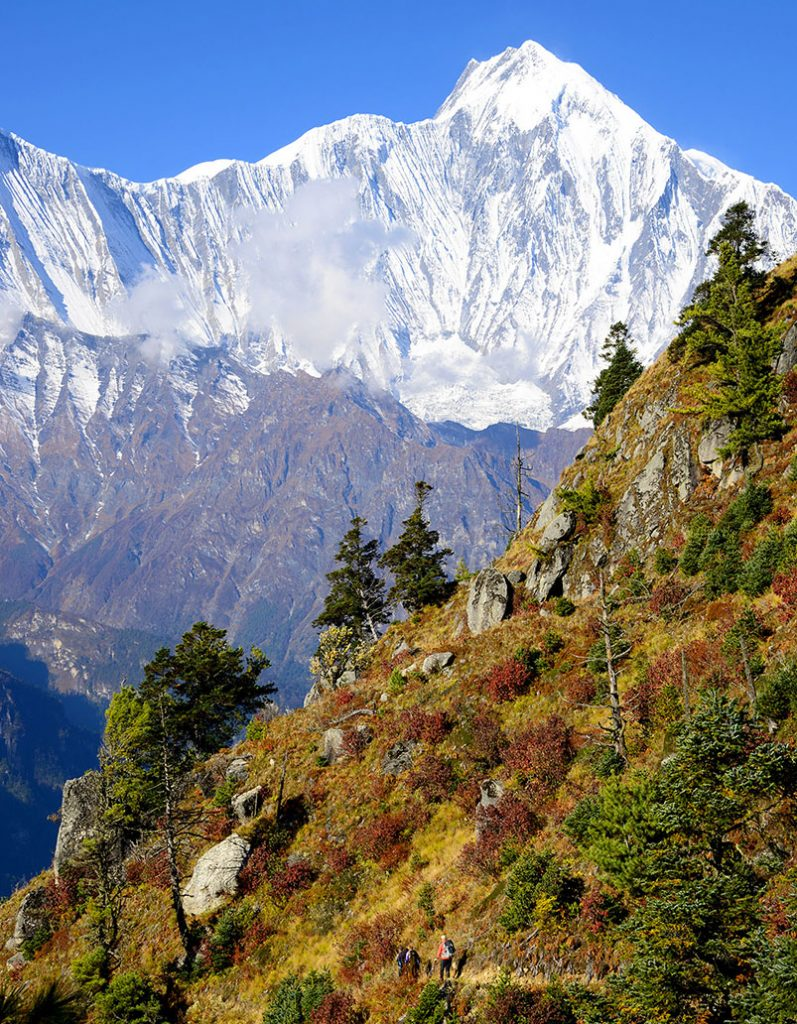 Annapurna Circuit Special (restricted area included)